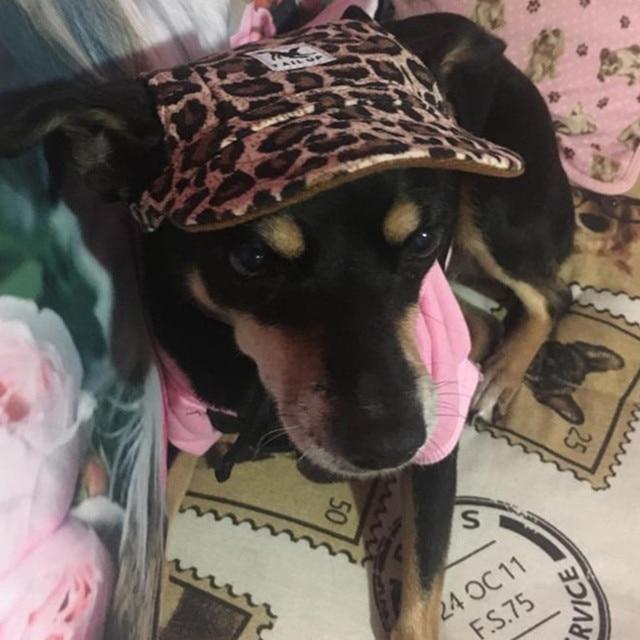 Dog Caps 8
