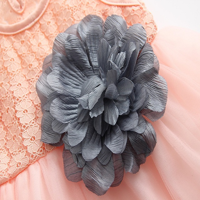 Peach Lace Dress with Gray ribbon accent