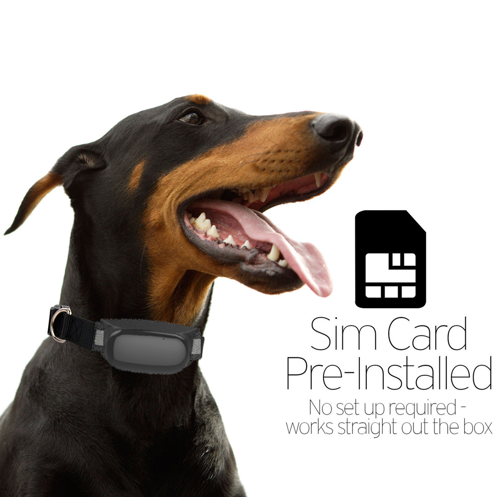 Waterproof GPS Tracker With Collar GSM/GPRS Positioning Real Time Waterproof GPS Tracker Dog Pet Via Website & iOS APP 5pcs pet gps tracker v40 3g network waterproof mini gps tracker dog cat pet personal tracking locator ios andriod app gsm gprs