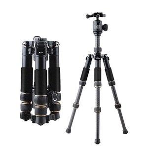 Image 2 - كاميرا فيديو احترافية صغيرة QZSD Q166C من ألياف الكربون ترايبود قابلة للتمديد للسفر مع رأس كروية ولوحة إطلاق سريعة