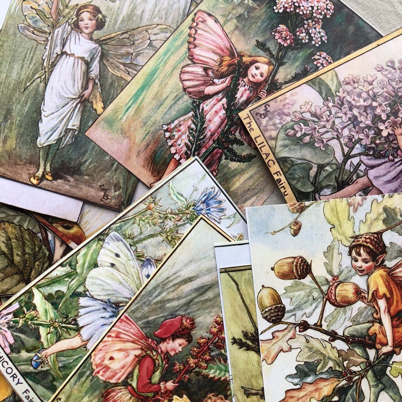 27pcs Flower Fairy Alice Elf Flower Forest Angel Material Paper Scrapbooking DIY Projects/photo Album/card Making Craft\Stickers