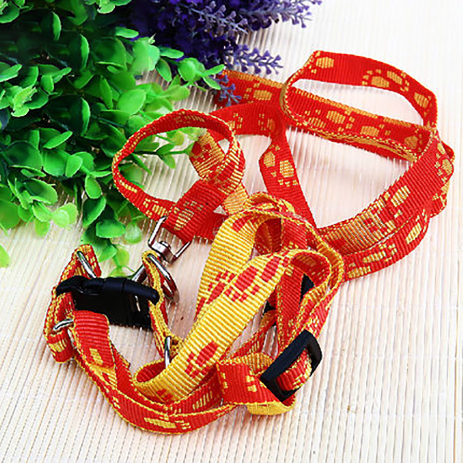 Various Safety Walking Puppy Dog Harness Set Cartoon Cat Dog Harness Leashes + Matching Lead Leash for small Dog Pet WWM2371