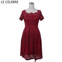 LE CELEBRE Boat Neck Lace Party Dresses 2018 Vintage Women Dresses Short Sleeves Ladies Dresses Knee