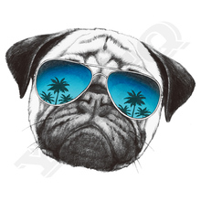 Pug Dog Sticker On Clothes Washable New Design Diy Accessory Clothing Deco Heat Transfer Badges Applique
