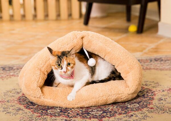 Design Voor Honden : New design honden katten fashion slaapzak honden katten warme