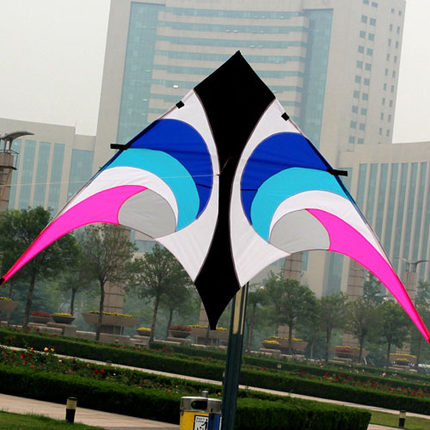 Free Shipping Outdoor Fun Sports The New 2.8 m Umbrella Cloth Power Kite Eye In The Sky Flying
