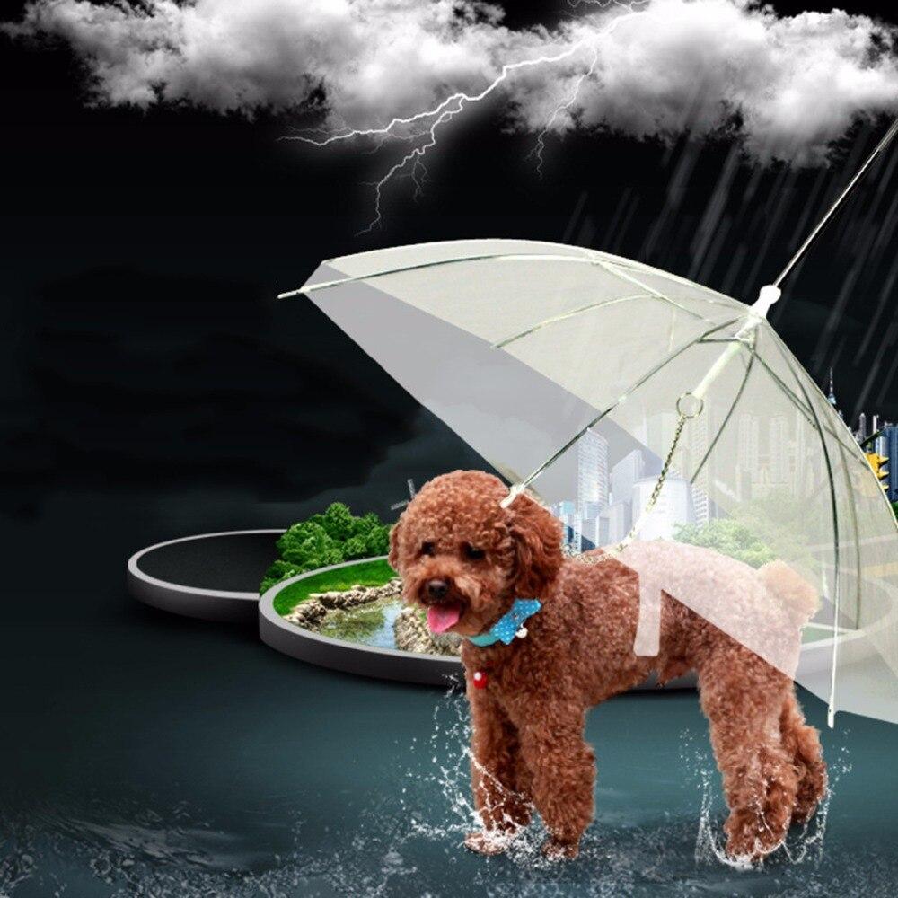 Acquista A Buon Mercato Pet Trasparente Ombrello Con Il Cane Conduce Catene Utile Trasparenza Pe Pioggia Passeggiata Di Traino Corda Cani Di Piombo Animali Impermeabile Forniture