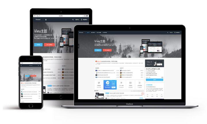 WordPress主题 量级个人企业风格博客主题 Vieu v4.0.1破解无授权无限制版(更新V4.5)
