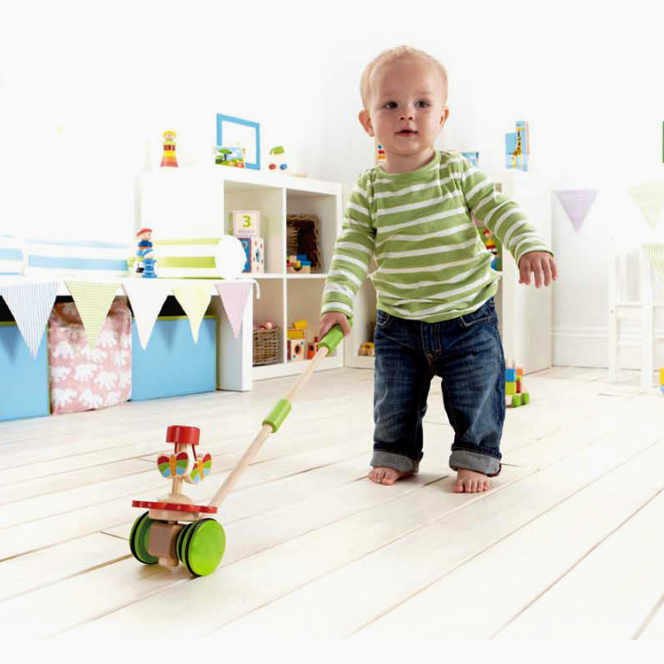 Free Delivery Animal Push Amp Pull Can Drag Toys Children S
