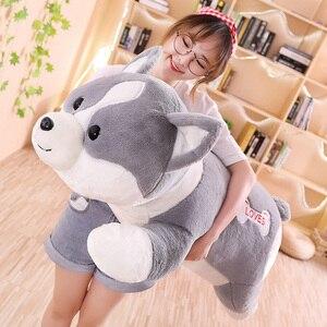 Image 5 - 55/95cm güzel Corgi köpek peluş oyuncak dolması yumuşak hayvan karikatür yastık çocuklar çocuklar için en iyi hediye
