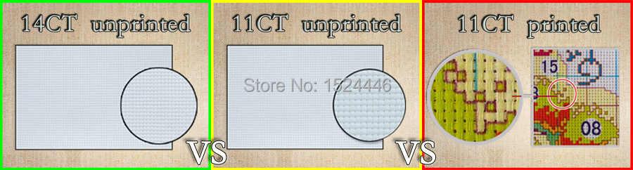14CT 11CT הדפסת בד DMC צלבים בעבודת יד, ציורי ציפורים ופירות רקמת, סטי רקמה עיצוב בית