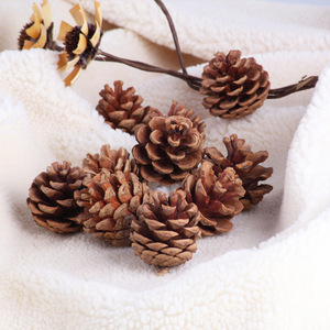 Image 3 - 10pcsธรรมชาติPine Conesอุปกรณ์Photo Propsคริสต์มาสตกแต่งต้นไม้Toppers Pinecone Xmasปีใหม่DIYตกแต่ง