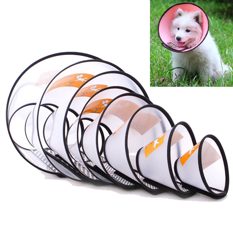 Carrywon Hot Sale Coloful Pet Dog Cat Bite-Proof Protector Collar Wound Healing Cone Protective Collars Health Beaty Tool