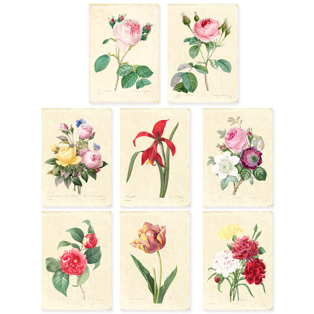 Vintage Redoute Botanical  art Print Set SET of 10 Art Rose floar Farmhouse wall decor unframed