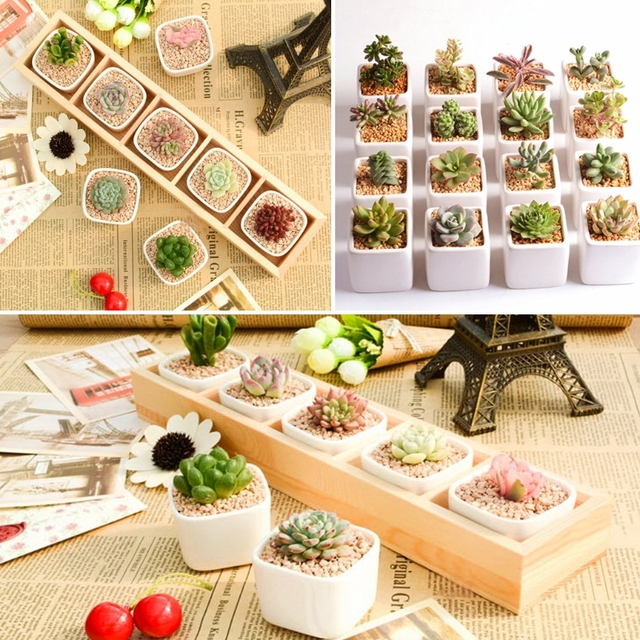 Top Quality 5-Grid Wooden Succulent Plant Fleshy Flower Pot Box Tray Decorative Containers Nov22