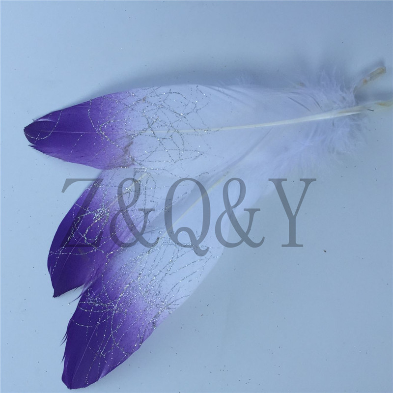 Z&Q&Y Natural 20 Beautiful 15-20CM/6-8 Inch White Goose Feathers Dip Purple Gold DIY Decorative Clothing Makeup Feather