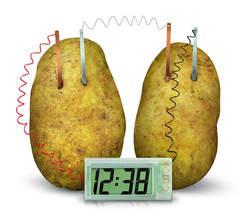 Картофельные часы Роман зеленый научный проект эксперимент комплект лаборатория дома школьная игрушка забавные Развивающие DIY материал