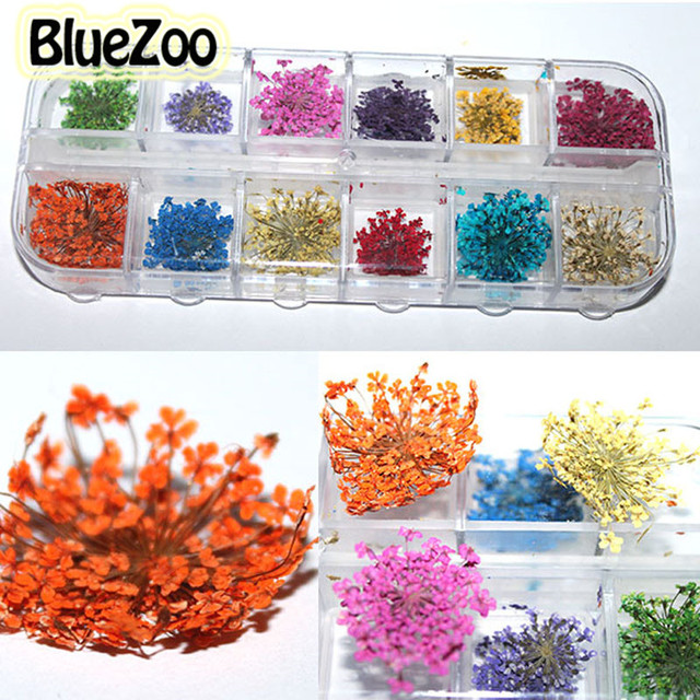 BlueZoo 12 Colors Real Dried Flowers Nail Art Decorations Dry Floral Manicure Decoration Flower Stickers