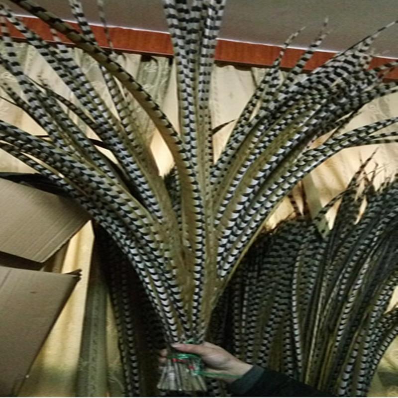 도매 10 개/몫 대형 140 150 cm (56 60 inch) 자연 reeves venery 꿩 꼬리 깃털-에서깃털부터 홈 & 가든 의  그룹 1