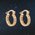 New Design Rose Gold Plated Cubic Zirconia Hollow Round Engagement/Wedding Hoop Earrings for Women Wholesale DFE833