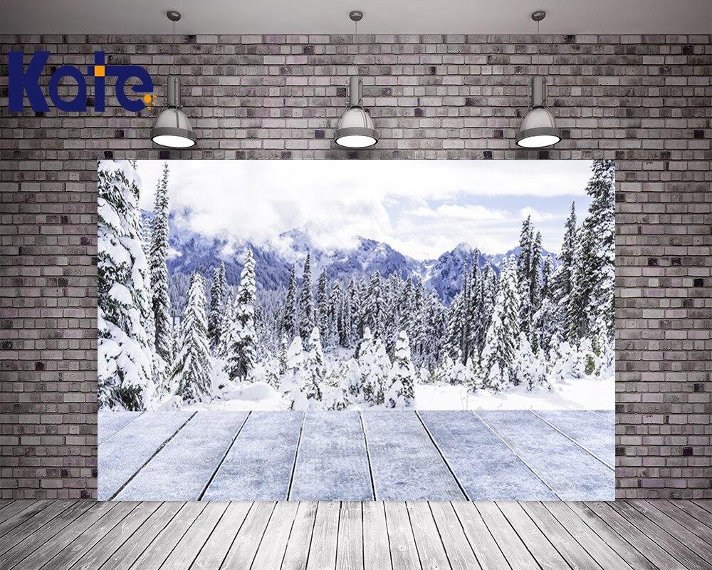 Kate Frozen neige photographie décors arbre enneigé montagnes hiver fond bois plancher pour mariage Photo Studio