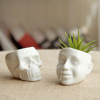 1PC Flower Pots Capita Skull Flower Pots Planters Desktop Accessories Home Decoration Modern Design Gifts White