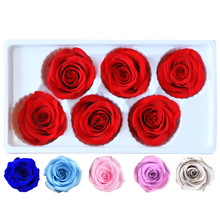 6PCS/BOX 5-6cm Preserved Flowers Flower Immortal Rose Valentines Day Gift Eternal Life  box Wholesale Level A