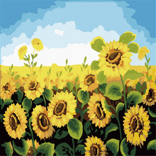 Sunflowers Field Oil Paintings By Numbers DIY Digital Pictures Coloring On Canvas Unique Gift Home Decoration Cheap