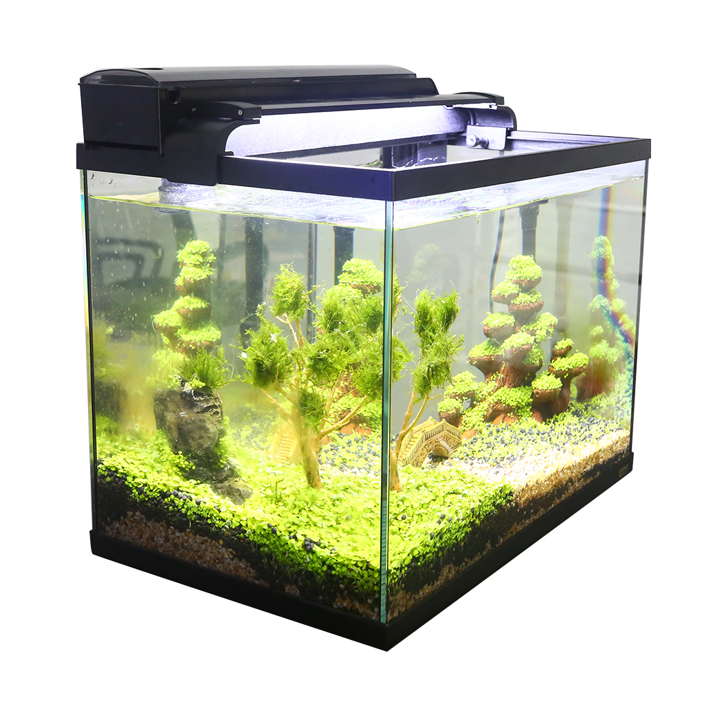 Aquarium Fish Tank 3 Dans 1 Aquarium Kit avec Verre Fish Tank, filtre et lumière LED Affichage Poisson Rouge Mini Poissons D'aquarium Réservoir