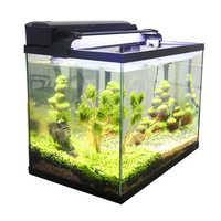 Pecera de acuario 3 en 1 Kit de acuario con pecera de cristal, filtro y pantalla de luz LED peces de colores Mini pecera de acuario