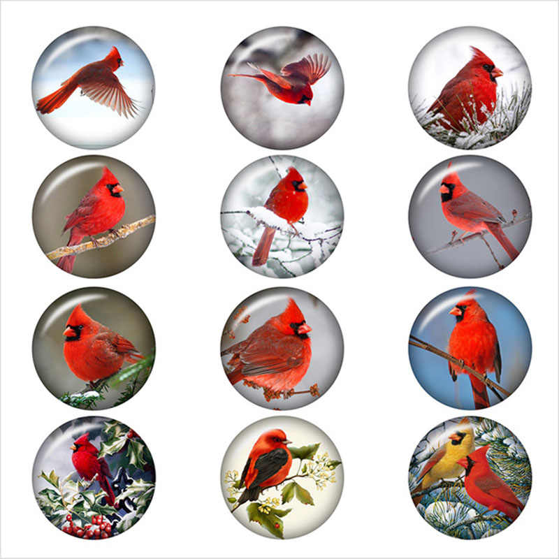 מעורב קרדינל חג המולד ציפור דפוס הצמד כפתור עגול תמונה זכוכית הצמד תכשיטי כפתור