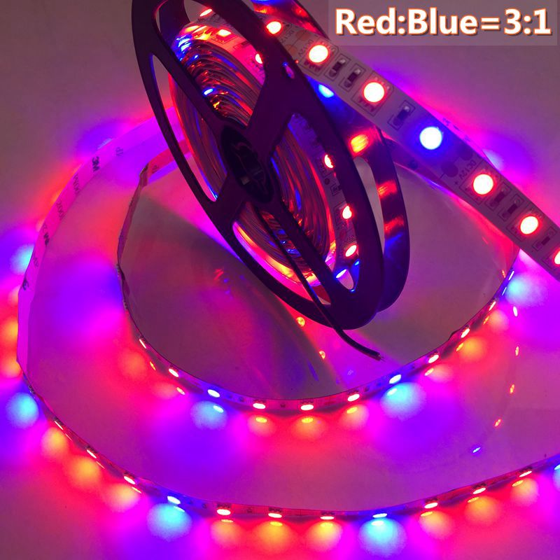 LED Plant Grow Lights 5050 LED Strip DC12V Red Blue 3:1, 4:1, 5:1,for Greenhouse Hydroponic Plant Growing IP20 IP65 Growth Light