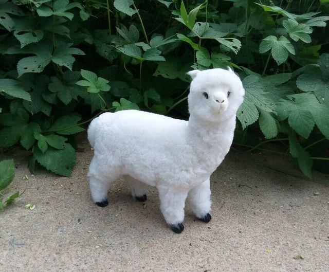 Các mô phỏng alpaca phong thủy plutus cừu Thiên Chúa quái thú sáng tạo búp  bê
