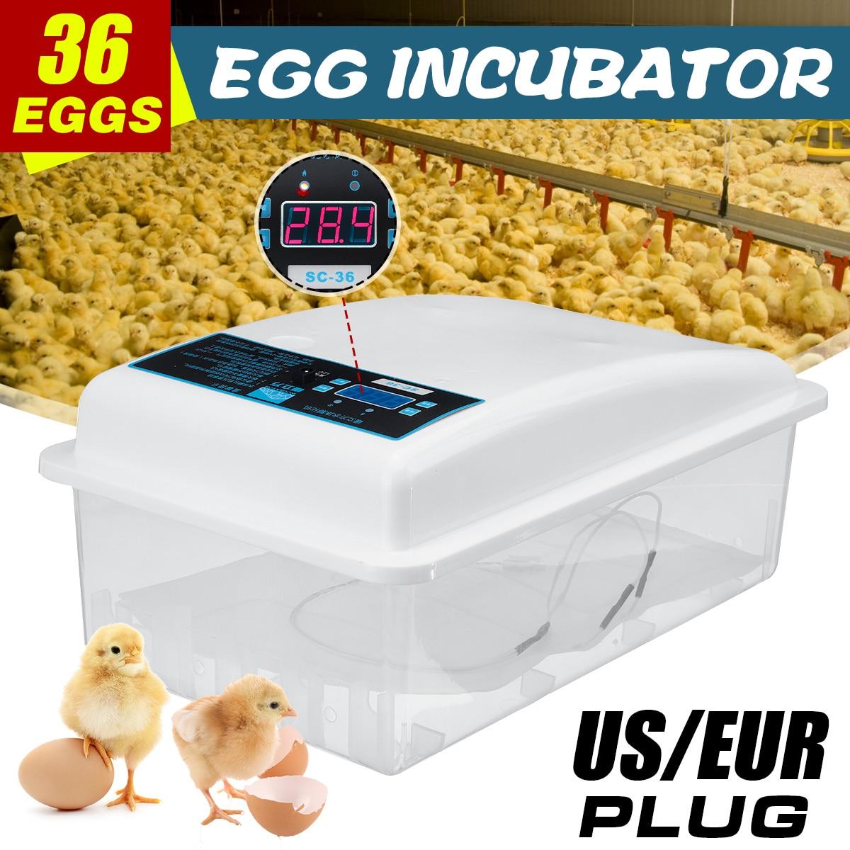 Automatic Digital 36 Eggs Turning Incubators Chicken Chick Farm Hatcher Temperature Control  For Chicken Eggs Incubator