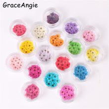 GraceAngie 20pcs Colorful Natural Dried plum Flower Cute Cabochons herbarium Necklace Pendant DIY Jewelry phone shell Accessory(China)