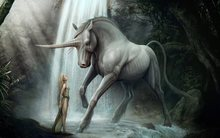 unicorn horse magical animal and girl 2 4 Sizes Home Decoration Canvas Poster Print