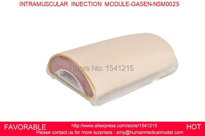 BASIC INTRAMUSCULAR INJECTION KIT, INJECTION PAD,NURSING SIMULATION TRAINING MODEL INTRAMUSCULAR INJECTION MODULE-GASEN-NSM0025
