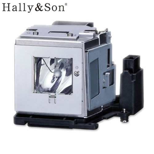 Hally&Son Free shipping Projector Lamp Bulb AN-D350LP for PG-D2500X/ PG-D2710X/ PG-D2870W/ PG-D3010X etc projector Wholesale hally