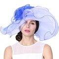 Бесплатная доставка мода элегантный новая шляпа органзы Hat церковь Hat летнее платье Hat мода платье свадебное платье цветок два тона цветов