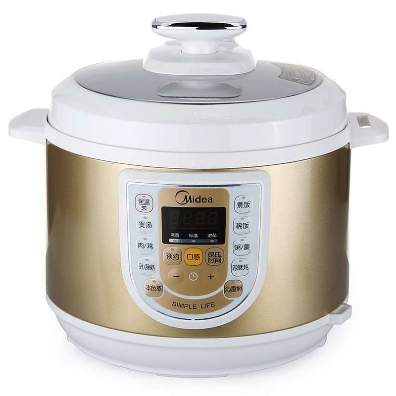 Types Of Pressure Cookers: W13PCS503E Pot Of Double Gallbladder Brain Type Electric