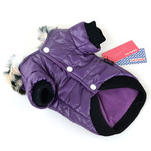 Superb winter chihuahua raincoat / jacket