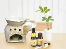 Elephant Shape Ceramic Essential Oil Aromatherapy Burner Handmade Aroma Burner Home Fragrance Oil Incense Burner Living Room