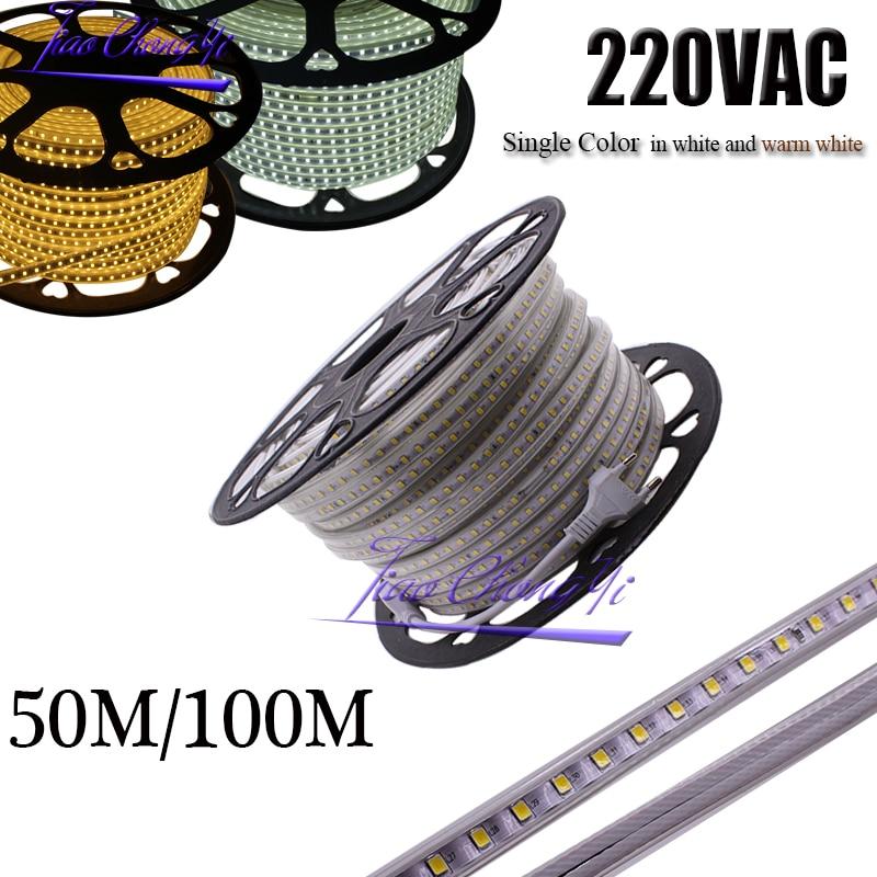 220VAC LED bande 2835 100 LED s/M IP67 étanche avec adaptateur secteur Flexible LED ruban ruban ruban extérieur 50 M/rouleaux, 100 M/rouleaux