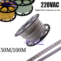 220VAC Led Strip 2835 100Leds/M IP67 Waterproof With Power Adapter Flexible LED Tape Ribbon Outdoor 50M/rolls,100M/rolls
