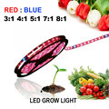5m 5050 SMD Hydroponic Systems Led Plant grow light Waterproof Led Grow Strip Light 300LEDS 72W Full spectrum Grow Box dropship