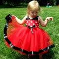 Лето девочка малыша горошек свадьба ну вечеринку театрализованное пузырь платье тюль платье новое поступление