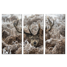 Giclee Canvas HD Print Deer Under Weeds Cover With Rime Wall Art Decor Painting Home And Office Decorations Wall Murals Triptych