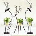 Kreative Wasserkulturanlage Transparent Glas Vase mit Eisen Deer Design Stehen Halter für Hause Wohnzimmer Tisch Dekoration