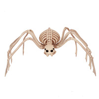 Skeleton Spider 100% Plastic Animal Skeleton Bones for Horror Halloween Decoration Gift Box