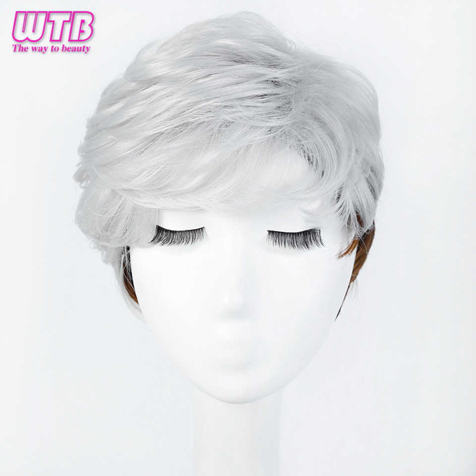 WTB Short Straight Wigs for Women Synthetic Silver Brown Ombre Hair with Heat Resistant Cosplay Wig